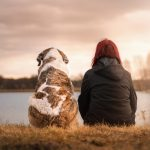 Hvad siger dit valg af hunderace om dine spilpræferencer?